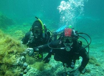 Mister Jump Diving in Ustica